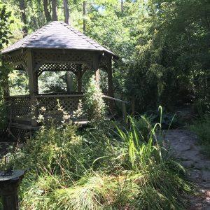 Hidden Forest Nursery
