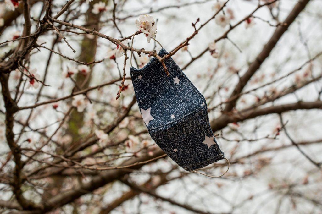 Hidden Forest Nursery Covid message