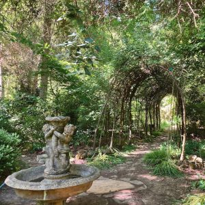 forest arbor and fountain
